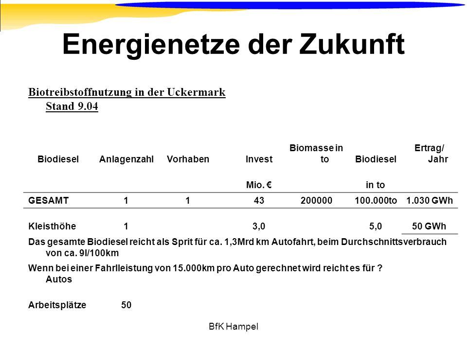 BfK Hampel Energienetze der Zukunft Biotreibstoffnutzung in der Uckermark Stand 9.04 BiodieselAnlagenzahlVorhabenInvest Biomasse in toBiodiesel Ertrag