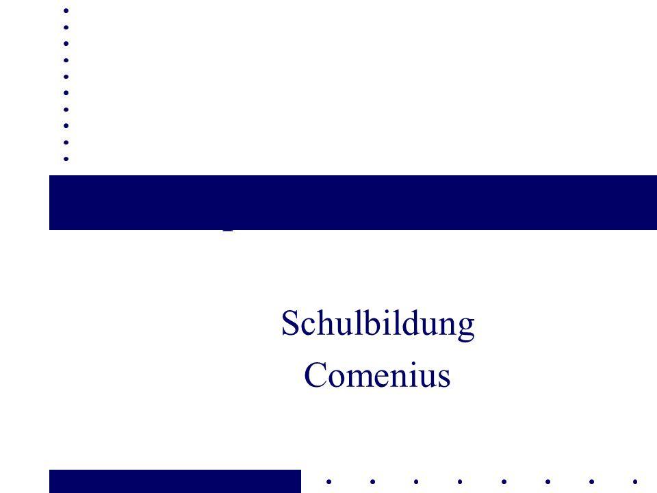 DG Bildung und Kultur Sokrates - Comenius 12 12 Hauptelemente l Fortsetzung erfolgreicher Aktionen in der schulischen Bildung l Einbindung der früheren Aktion 2 von Comenius l Comenius-Plan l Comenius-Schulentwicklungsprojekte l Schülermobilität in allen Projekten l vereinfachte Verfahren