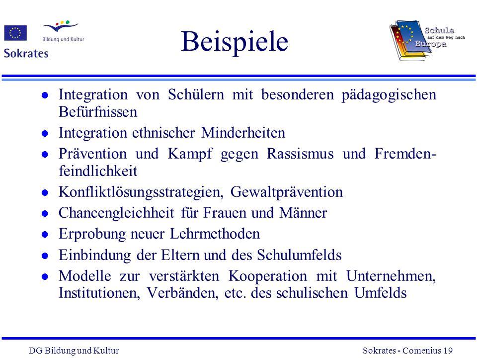 DG Bildung und Kultur Sokrates - Comenius 19 19 Beispiele l Integration von Schülern mit besonderen pädagogischen Befürfnissen l Integration ethnische