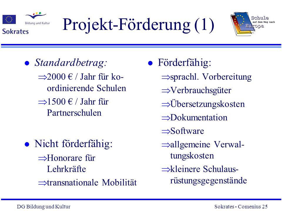 DG Bildung und Kultur Sokrates - Comenius 25 25 Projekt-Förderung (1) l Standardbetrag: 2000 / Jahr für ko- ordinierende Schulen 1500 / Jahr für Partn