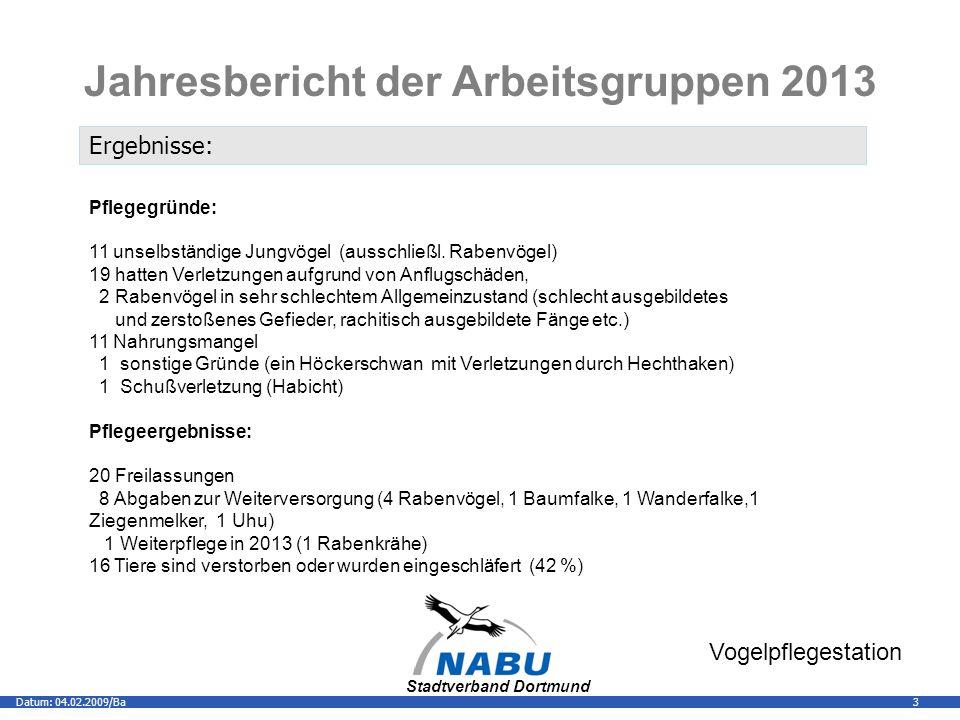 Stadtverband Dortmund 3Datum: 04.02.2009/Ba Vogelpflegestation Jahresbericht der Arbeitsgruppen 2013 Ergebnisse: Pflegegründe: 11 unselbständige Jungvögel (ausschließl.