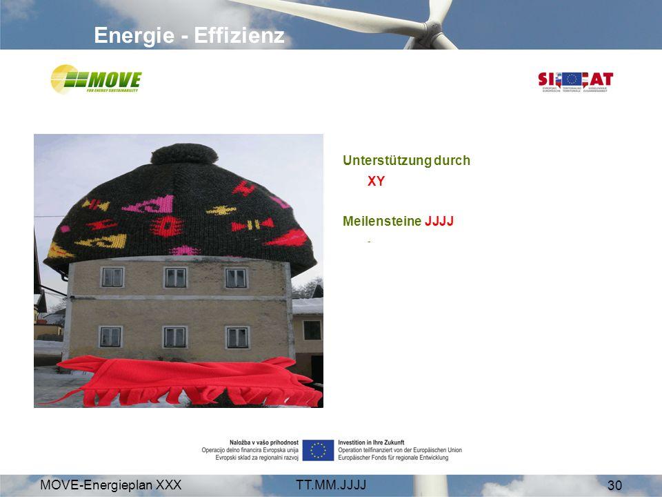 MOVE-Energieplan XXXTT.MM.JJJJ 30 Energie - Effizienz Unterstützung durch XY Meilensteine JJJJ -
