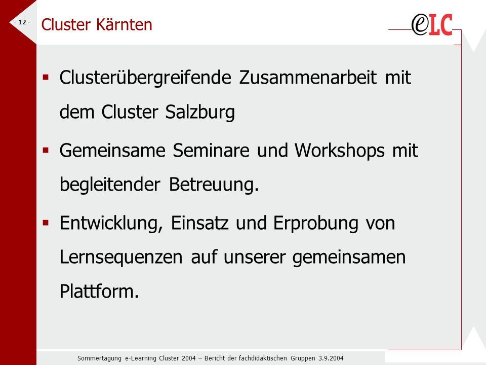 Sommertagung e-Learning Cluster 2004 – Bericht der fachdidaktischen Gruppen 3.9.2004 - 12 - Cluster Kärnten Clusterübergreifende Zusammenarbeit mit dem Cluster Salzburg Gemeinsame Seminare und Workshops mit begleitender Betreuung.