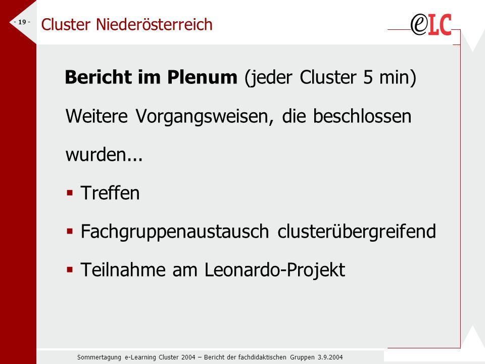 Sommertagung e-Learning Cluster 2004 – Bericht der fachdidaktischen Gruppen 3.9.2004 - 19 - Cluster Niederösterreich Bericht im Plenum (jeder Cluster 5 min) Weitere Vorgangsweisen, die beschlossen wurden...