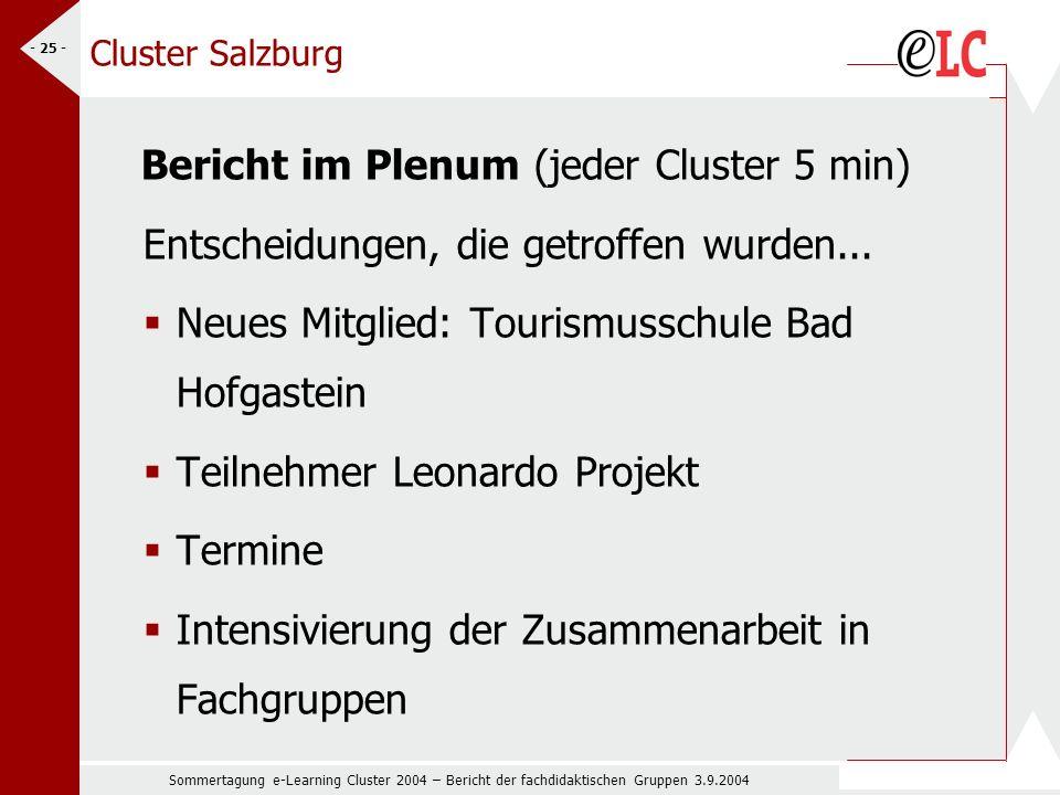 Sommertagung e-Learning Cluster 2004 – Bericht der fachdidaktischen Gruppen 3.9.2004 - 25 - Cluster Salzburg Bericht im Plenum (jeder Cluster 5 min) Entscheidungen, die getroffen wurden...