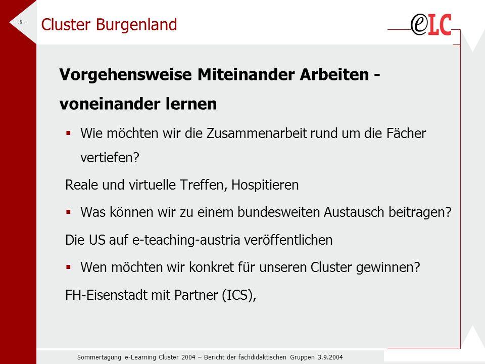 Sommertagung e-Learning Cluster 2004 – Bericht der fachdidaktischen Gruppen 3.9.2004 - 3 - Cluster Burgenland Vorgehensweise Miteinander Arbeiten - voneinander lernen Wie möchten wir die Zusammenarbeit rund um die Fächer vertiefen.