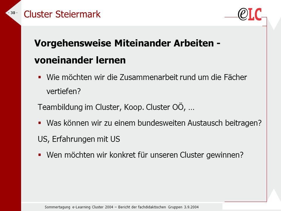 Sommertagung e-Learning Cluster 2004 – Bericht der fachdidaktischen Gruppen 3.9.2004 - 30 - Cluster Steiermark Vorgehensweise Miteinander Arbeiten - voneinander lernen Wie möchten wir die Zusammenarbeit rund um die Fächer vertiefen.