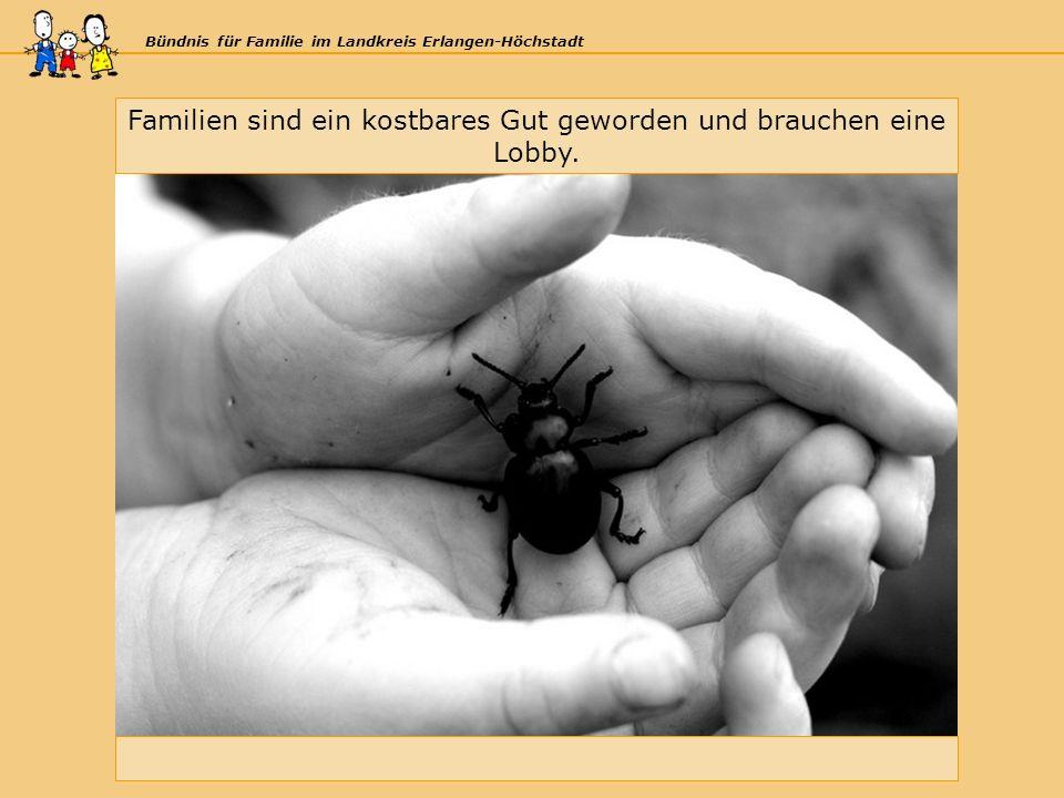 Bündnis für Familie im Landkreis Erlangen-Höchstadt Familien sind ein kostbares Gut geworden und brauchen eine Lobby.