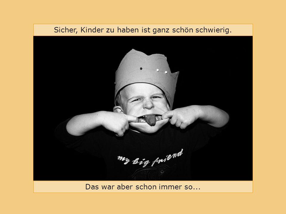 Bündnis für Familie im Landkreis Erlangen-Höchstadt Sicher, Kinder zu haben ist ganz schön schwierig.