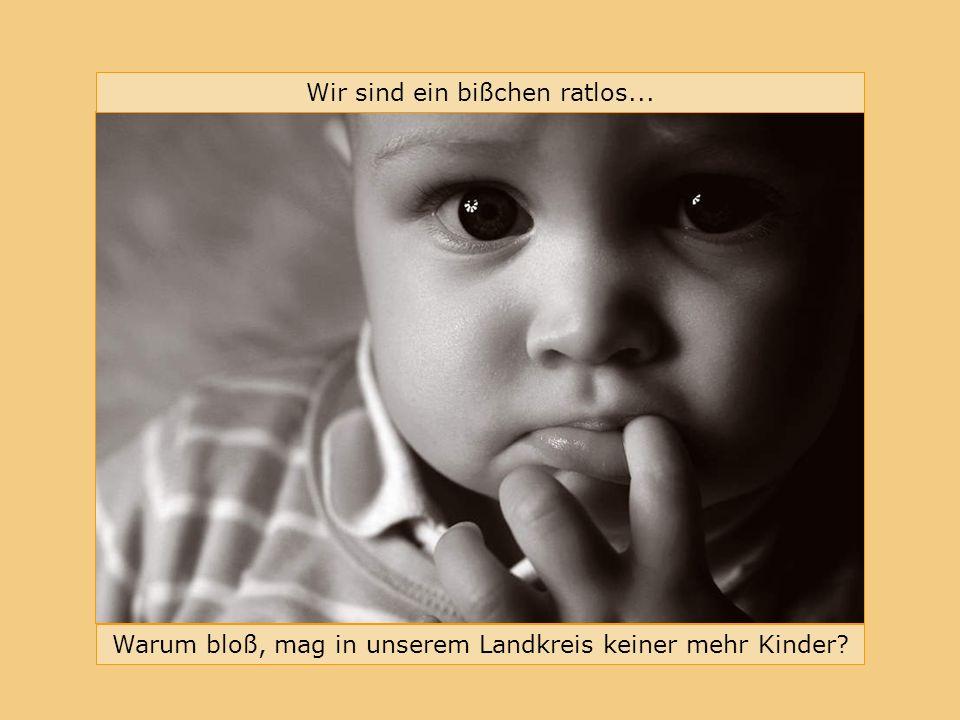 Bündnis für Familie im Landkreis Erlangen-Höchstadt Warum bloß, mag in unserem Landkreis keiner mehr Kinder.