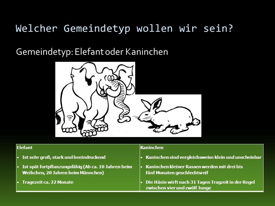 Welcher Gemeindetyp wollen wir sein? Gemeindetyp: Elefant oder Kaninchen Elefant Ist sehr groß, stark und beeindruckend Ist spät fortpflanzungsfähig (