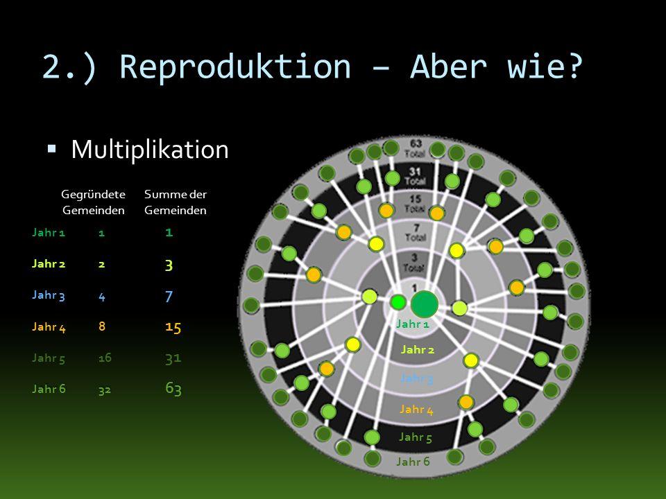 2.) Reproduktion – Aber wie? Multiplikation Jahr 2 Jahr 3 Jahr 4 Jahr 5 Jahr 6 Jahr 1 Jahr 11 1 Jahr 22 3 Jahr 34 7 Jahr 48 15 Jahr 516 31 Jahr 632 63