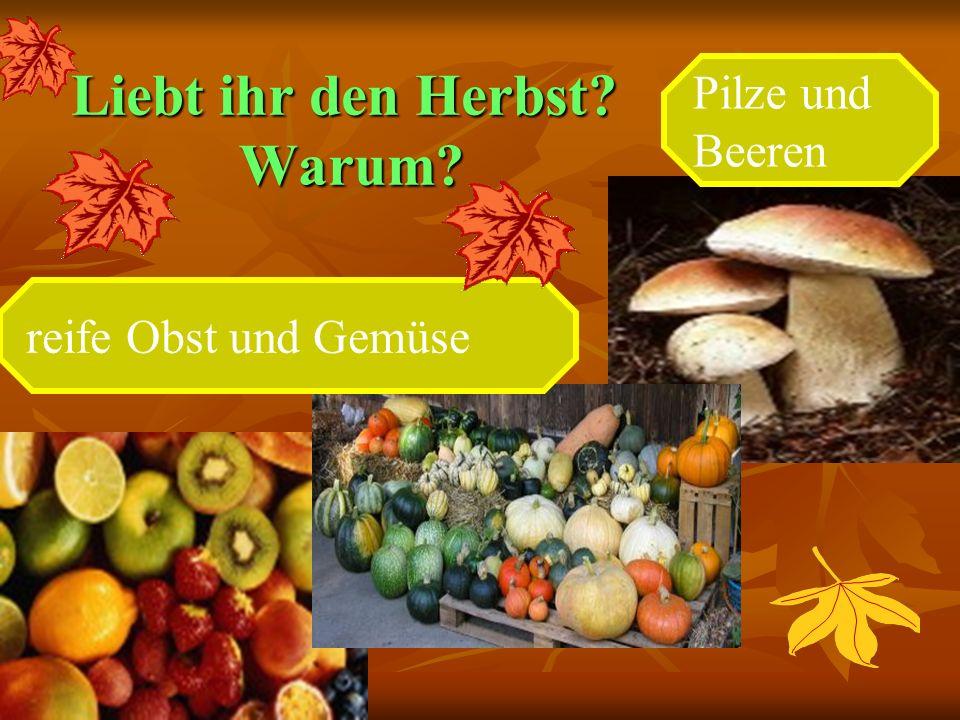 Liebt ihr den Herbst? Warum? reife Obst und Gemüse Pilze und Beeren
