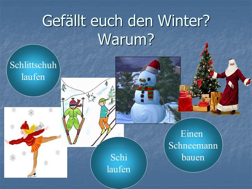 Gefällt euch den Winter? Warum? Schi laufen Schlittschuh laufen Einen Schneemann bauen