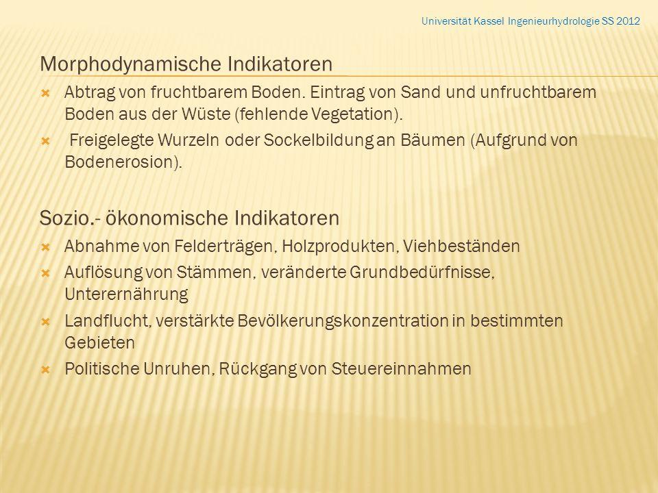 Morphodynamische Indikatoren Abtrag von fruchtbarem Boden. Eintrag von Sand und unfruchtbarem Boden aus der Wüste (fehlende Vegetation). Freigelegte W