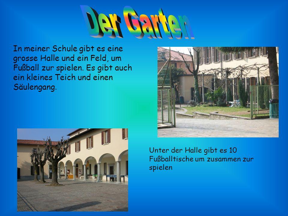 In meiner Schule gibt es eine grosse Halle und ein Feld, um Fußball zur spielen.