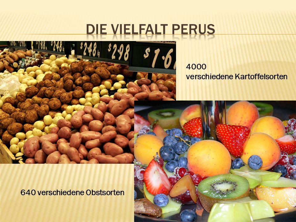 4000 verschiedene Kartoffelsorten 640 verschiedene Obstsorten