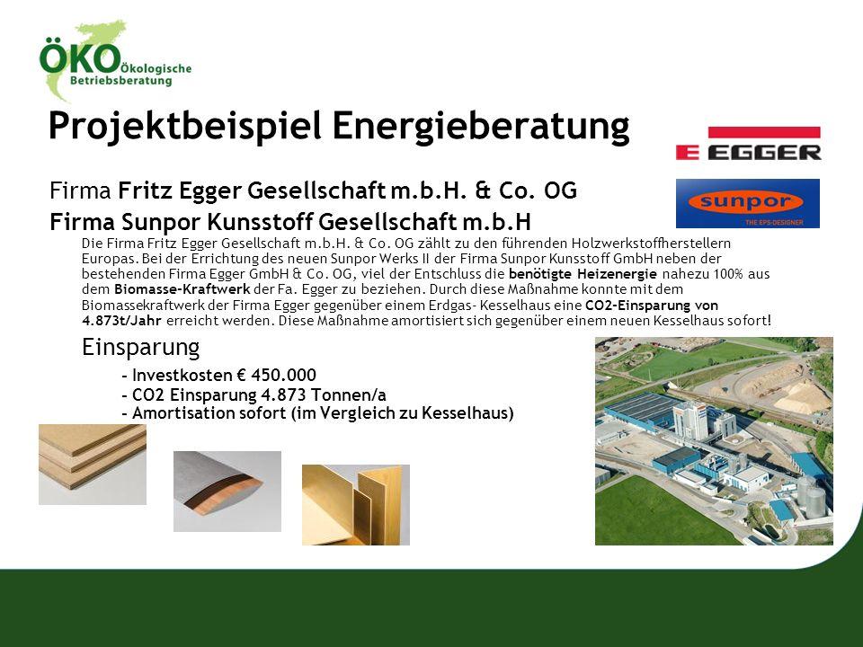 Projektbeispiel Energieberatung Firma Fritz Egger Gesellschaft m.b.H. & Co. OG Firma Sunpor Kunsstoff Gesellschaft m.b.H Die Firma Fritz Egger Gesells