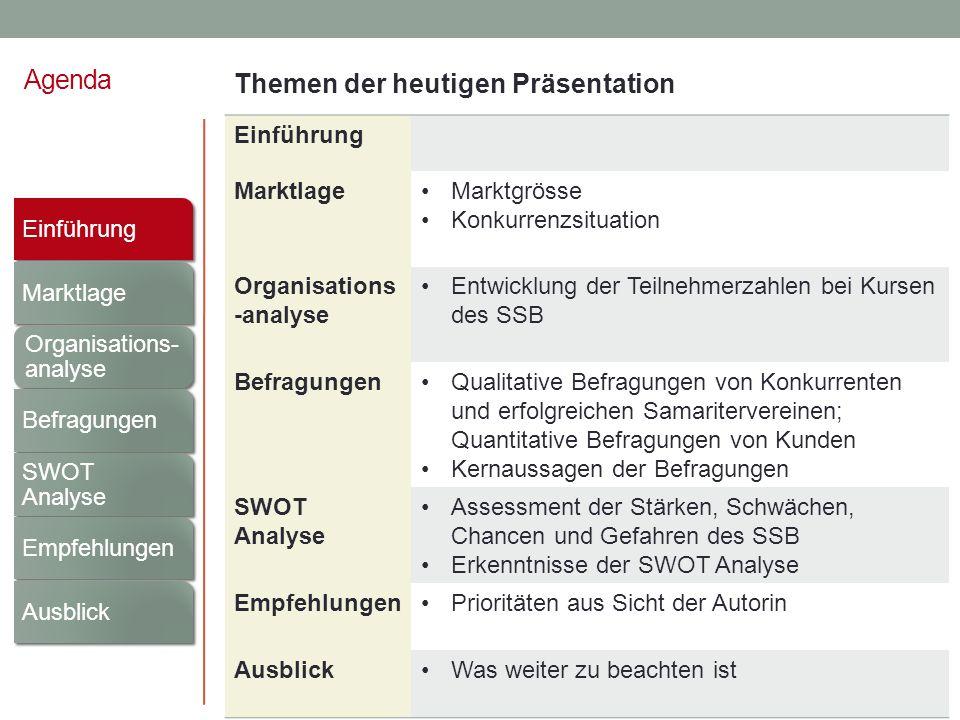 Agenda Einführung Marktlage Organisations- analyse Befragungen SWOT Analyse Empfehlungen Ausblick Einführung MarktlageMarktgrösse Konkurrenzsituation