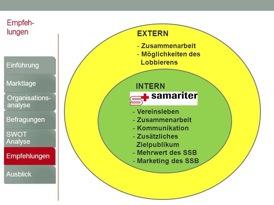 Empfeh- lungen INTERN EXTERN - Zusammenarbeit - Möglichkeiten des Lobbierens - Vereinsleben - Zusammenarbeit - Kommunikation - Zusätzliches Zielpublik