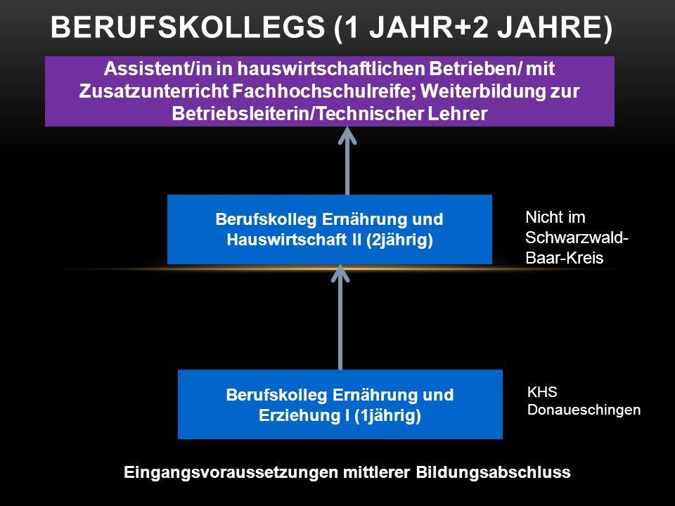 BERUFSKOLLEGS (1 JAHR+2 JAHRE) Eingangsvoraussetzungen mittlerer Bildungsabschluss Berufskolleg Ernährung und Erziehung I (1jährig) Assistent/in in ha