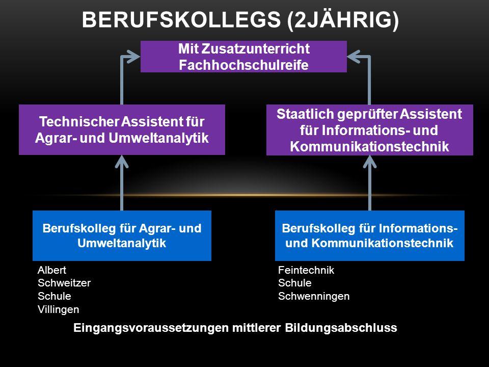 BERUFSKOLLEGS (2JÄHRIG) Eingangsvoraussetzungen mittlerer Bildungsabschluss Berufskolleg für Agrar- und Umweltanalytik Berufskolleg für Informations-