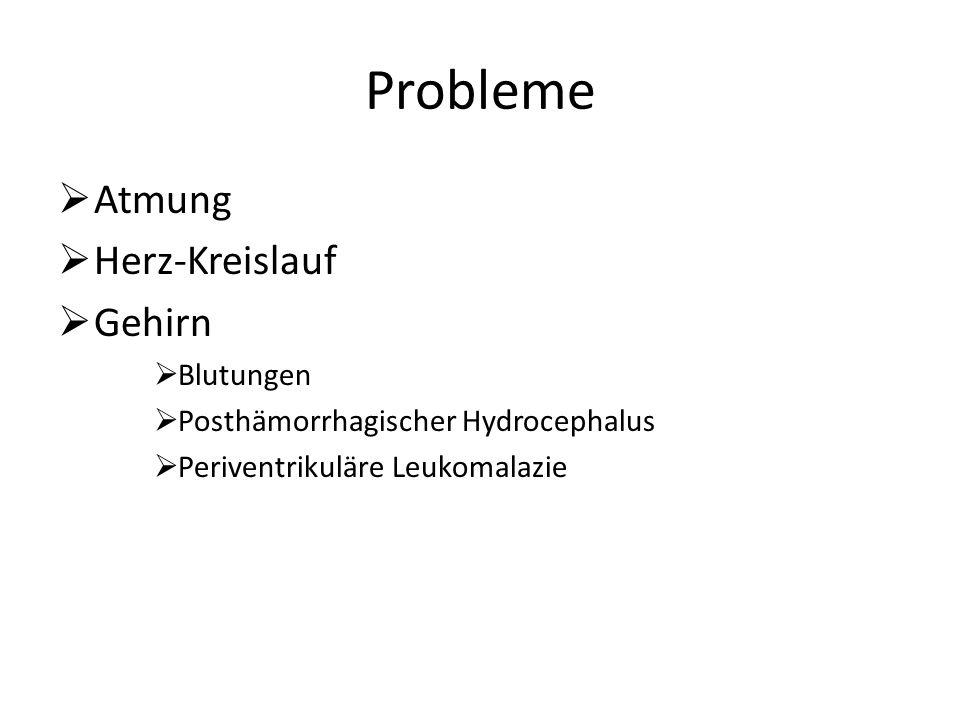 Probleme Atmung Herz-Kreislauf Gehirn Blutungen Posthämorrhagischer Hydrocephalus Periventrikuläre Leukomalazie
