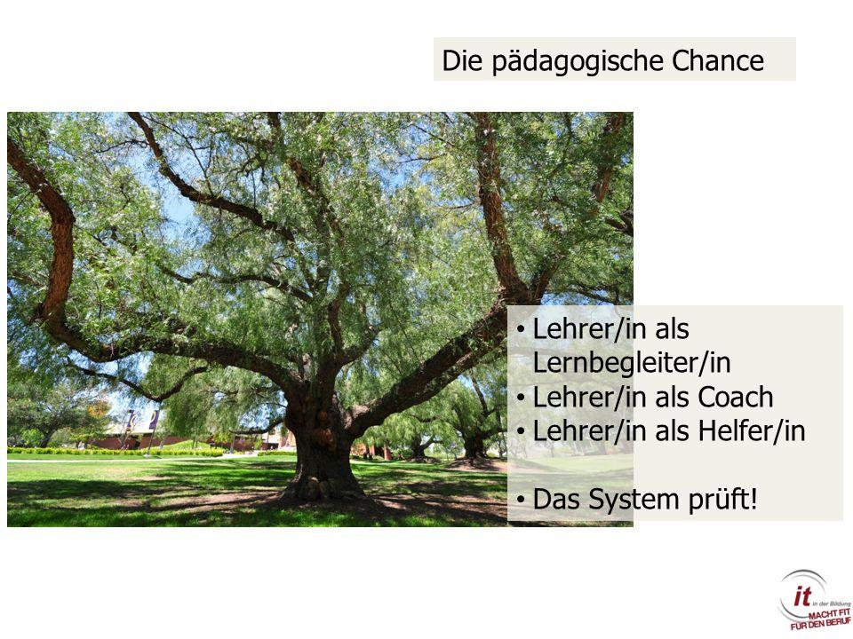 Lehrer/in als Lernbegleiter/in Lehrer/in als Coach Lehrer/in als Helfer/in Das System prüft! Die pädagogische Chance