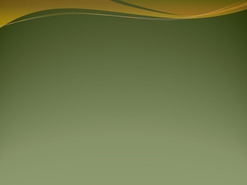 Kassenbericht EinnahmenHomob20.965,00 Beiträge42.764,25 2% Vermittlung15.083,87 78.813,12 AusgabenForstamt23.324,60 Versicherung 7.127,91 Verwaltungsaufw.27.033,5557.486,06 21.327,06 Gewinn25.911,96 Kassenstand01.01.2012146.518,89 31.12.2012169.604,21