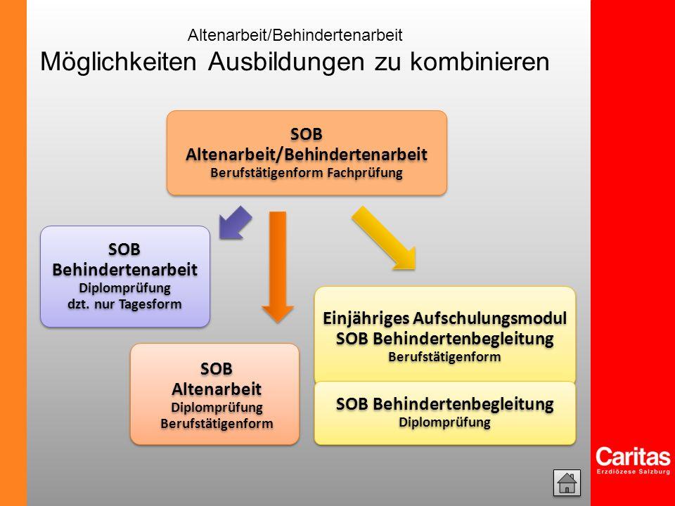 SOB Altenarbeit/Behindertenarbeit Berufstätigenform Fachprüfung SOB Altenarbeit Diplomprüfung Berufstätigenform SOB Behindertenarbeit Diplomprüfung dz