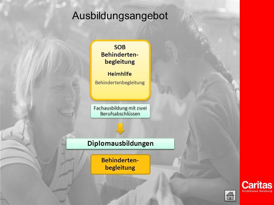Behindertenbegleitung Einstiegsmöglichkeiten in die Ausbildung 1.
