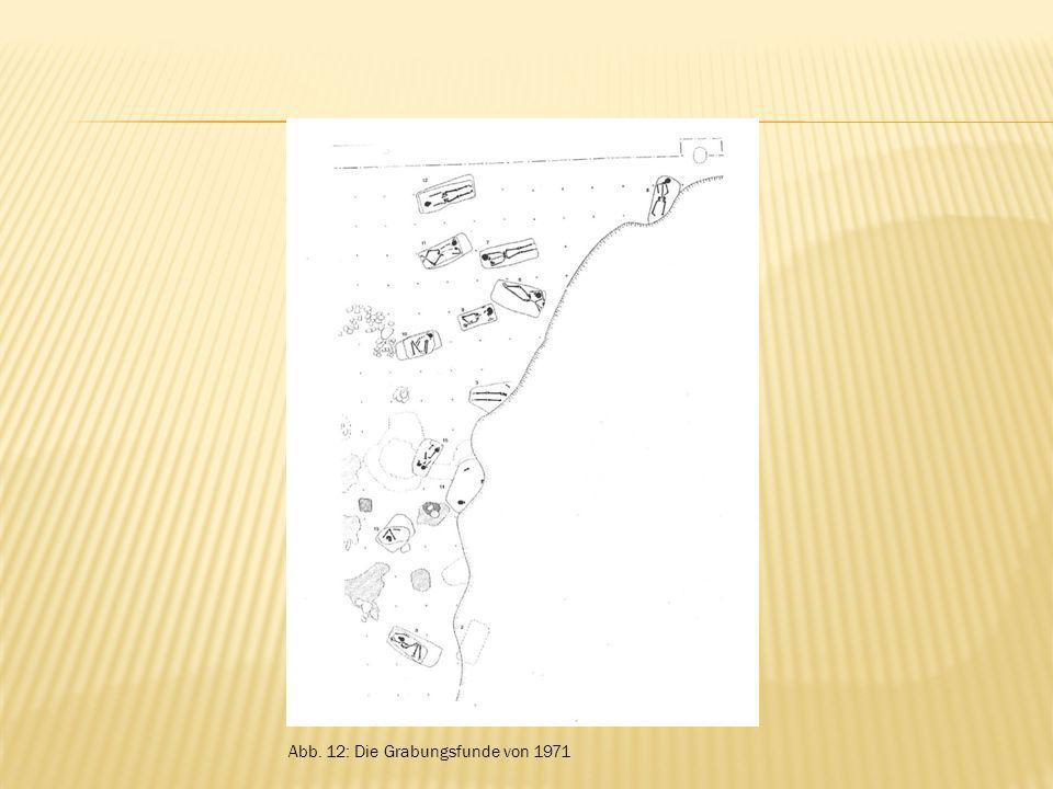 Abb. 12: Die Grabungsfunde von 1971