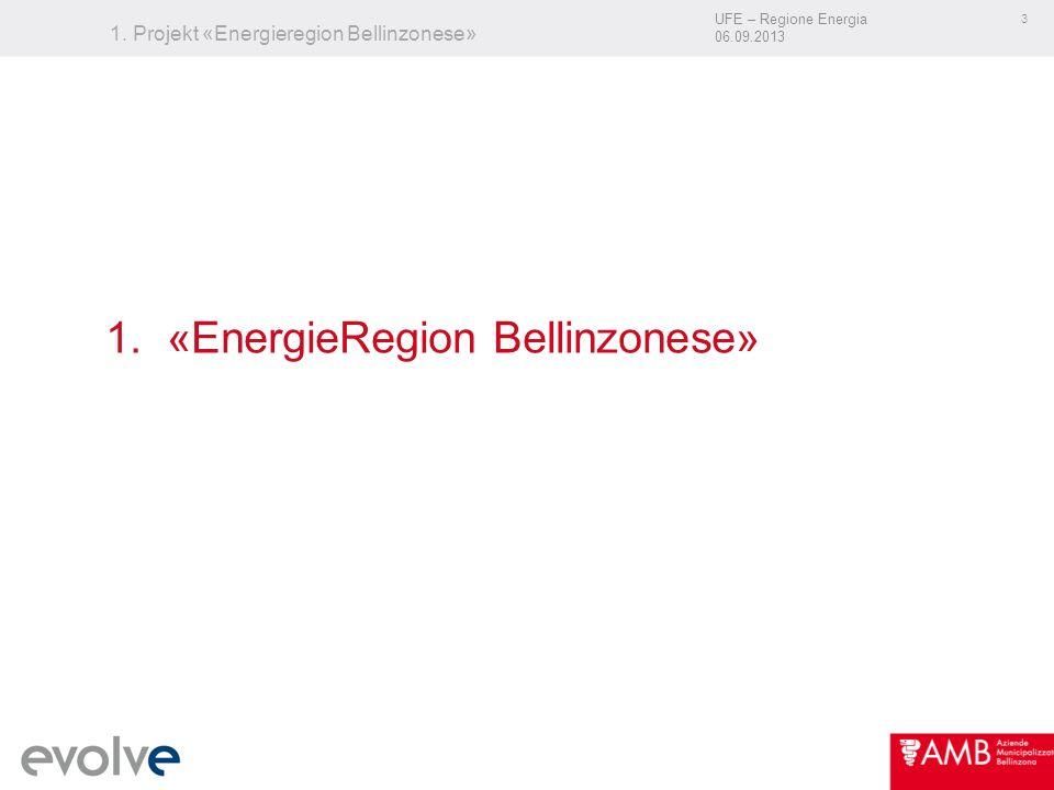 UFE – Regione Energia 06.09.2013 24 Wir danken Ihnen für Ihre Aufmerksamkeit