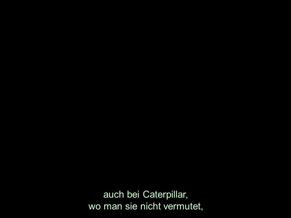 auch bei Caterpillar, wo man sie nicht vermutet,