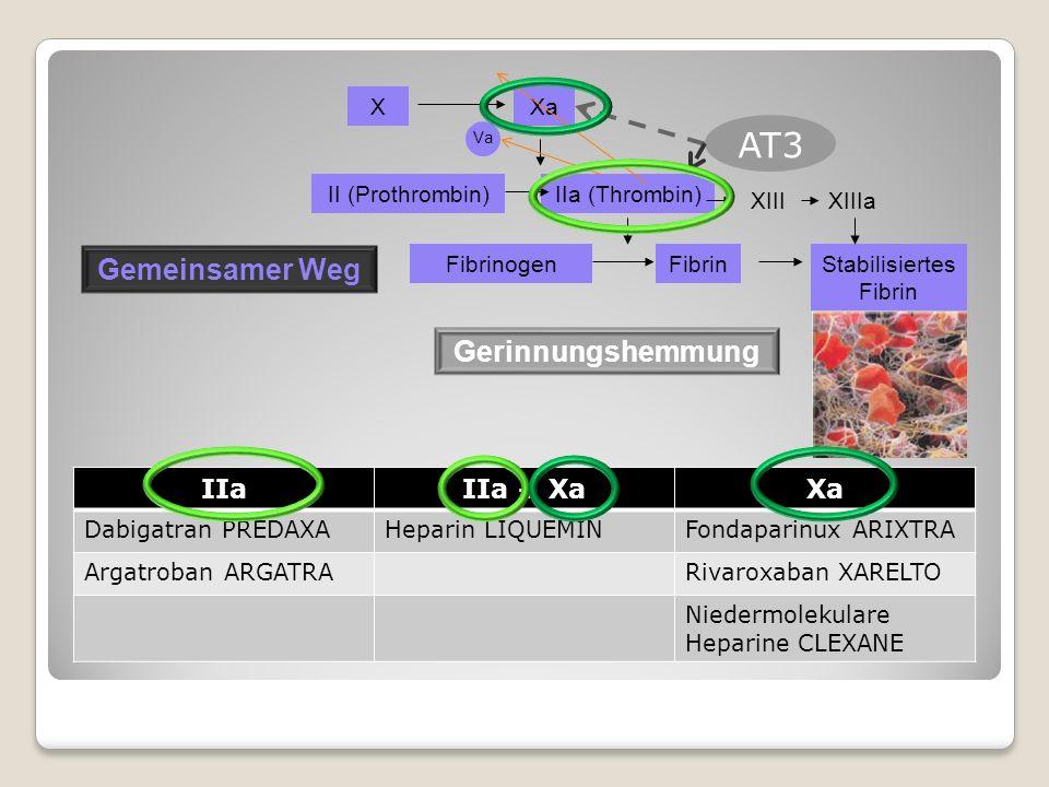 XXa Va II (Prothrombin)IIa (Thrombin) FibrinogenFibrinStabilisiertes Fibrin XIIIXIIIa Gemeinsamer Weg AT3 Gerinnungshemmung IIaIIa + XaXa Dabigatran PREDAXAHeparin LIQUEMINFondaparinux ARIXTRA Argatroban ARGATRARivaroxaban XARELTO Niedermolekulare Heparine CLEXANE
