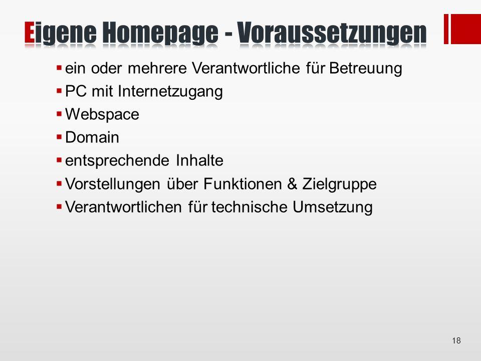 ein oder mehrere Verantwortliche für Betreuung PC mit Internetzugang Webspace Domain entsprechende Inhalte Vorstellungen über Funktionen & Zielgruppe Verantwortlichen für technische Umsetzung 18