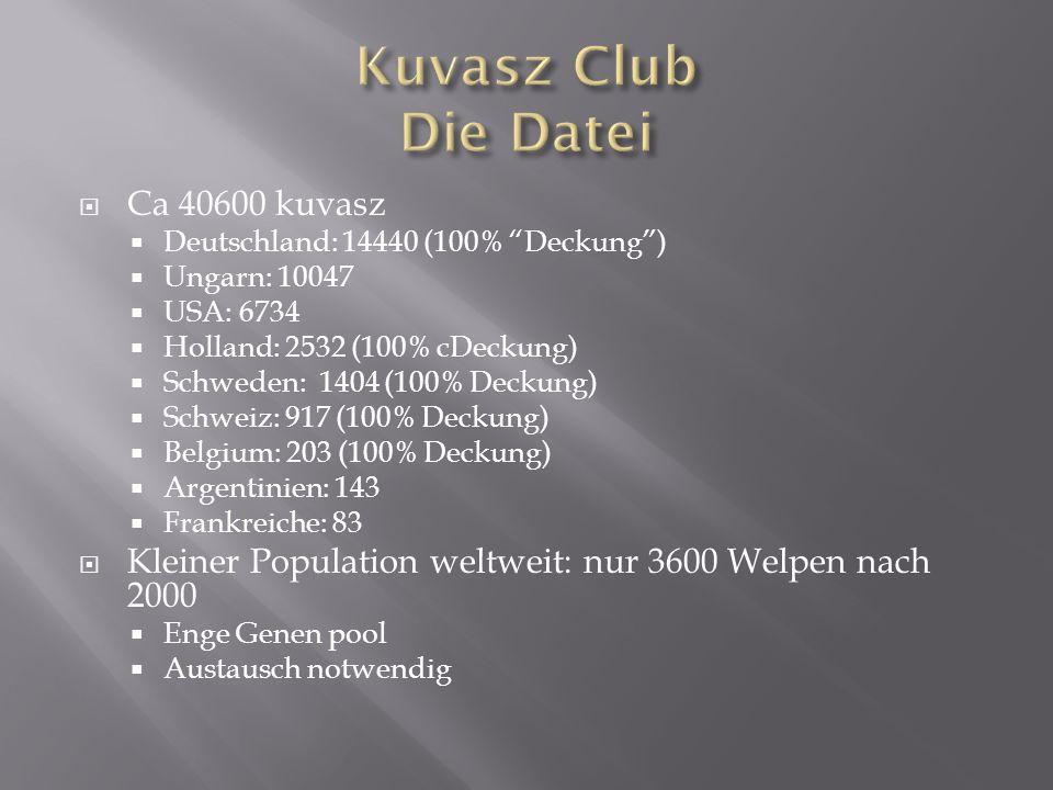 Ca 40600 kuvasz Deutschland: 14440 (100% Deckung) Ungarn: 10047 USA: 6734 Holland: 2532 (100% cDeckung) Schweden: 1404 (100% Deckung) Schweiz: 917 (10