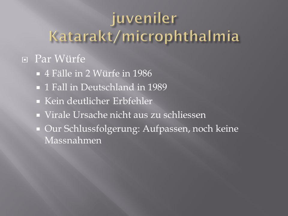 Par Würfe 4 Fälle in 2 Würfe in 1986 1 Fall in Deutschland in 1989 Kein deutlicher Erbfehler Virale Ursache nicht aus zu schliessen Our Schlussfolgeru