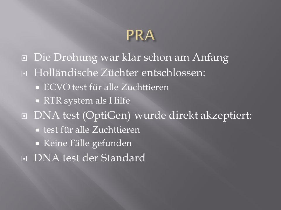 Die Drohung war klar schon am Anfang Holländische Züchter entschlossen: ECVO test für alle Zuchttieren RTR system als Hilfe DNA test (OptiGen) wurde d