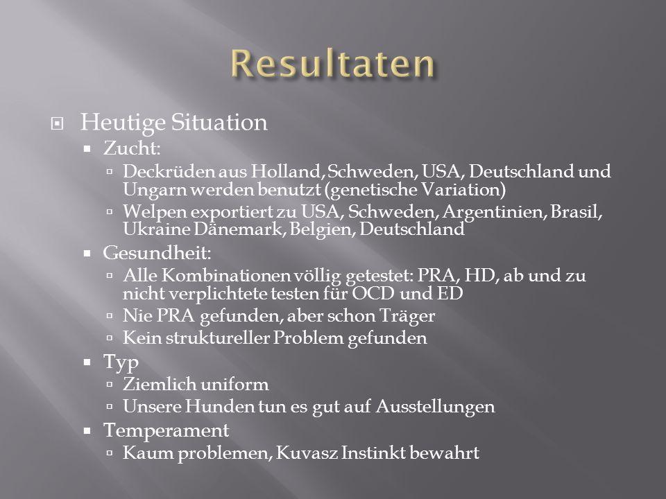 Heutige Situation Zucht: Deckrüden aus Holland, Schweden, USA, Deutschland und Ungarn werden benutzt (genetische Variation) Welpen exportiert zu USA,