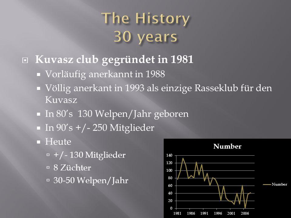 Kuvasz club gegründet in 1981 Vorläufig anerkannt in 1988 Völlig anerkant in 1993 als einzige Rasseklub für den Kuvasz In 80s 130 Welpen/Jahr geboren