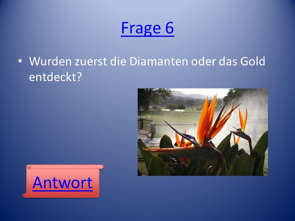 Frage 6 Wurden zuerst die Diamanten oder das Gold entdeckt? Antwort