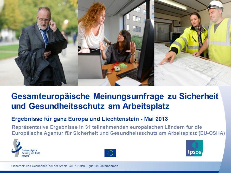 Gesamteuropäische Meinungsumfrage zu Sicherheit und Gesundheitsschutz am Arbeitsplatz Ergebnisse für ganz Europa und Liechtenstein - Mai 2013 Repräsen