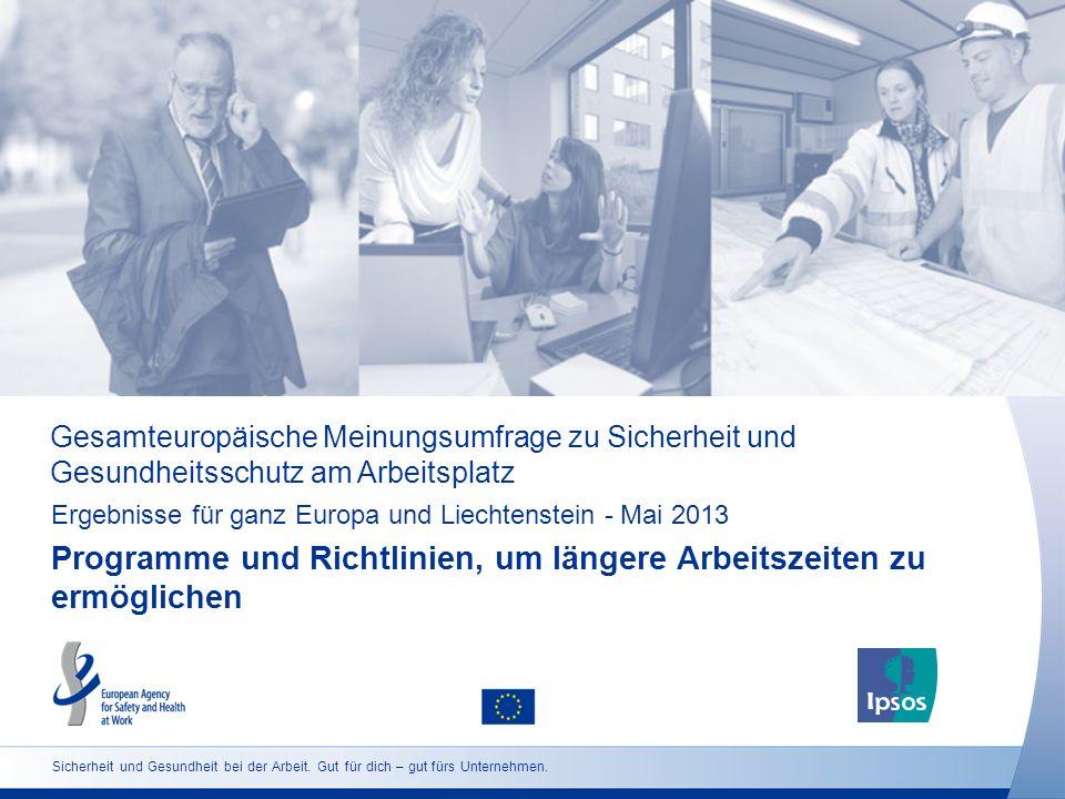 Gesamteuropäische Meinungsumfrage zu Sicherheit und Gesundheitsschutz am Arbeitsplatz Ergebnisse für ganz Europa und Liechtenstein - Mai 2013 Programm