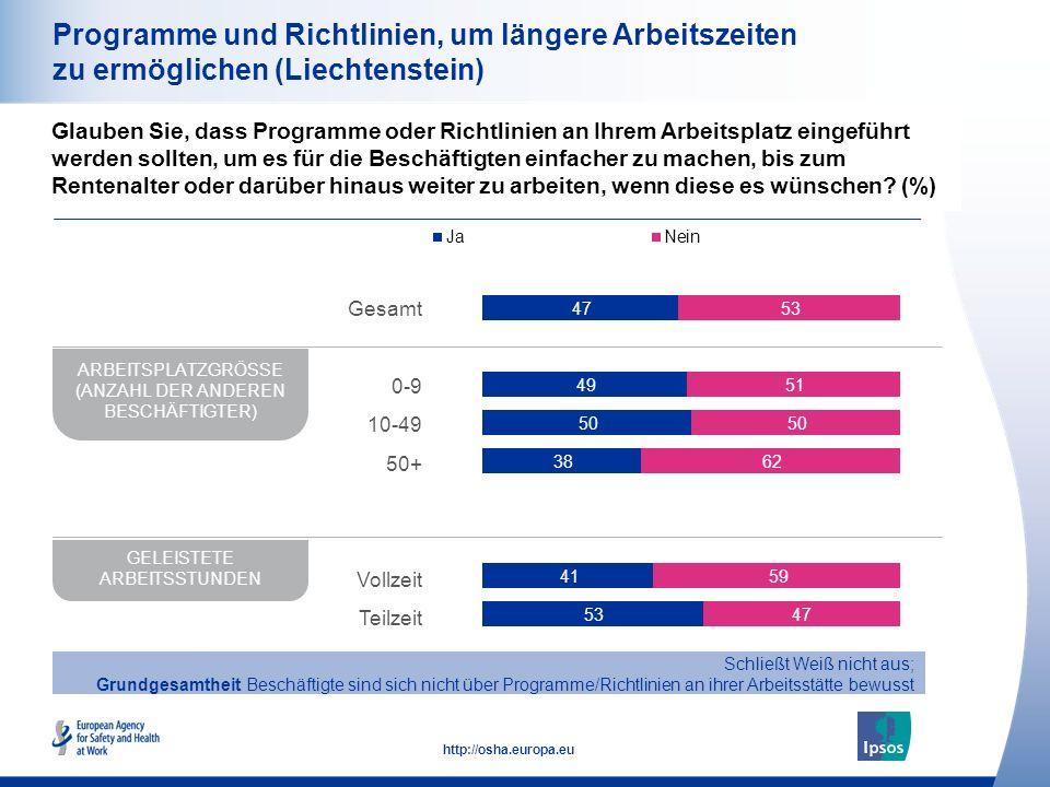29 http://osha.europa.eu Programme und Richtlinien, um längere Arbeitszeiten zu ermöglichen (Liechtenstein) Glauben Sie, dass Programme oder Richtlini