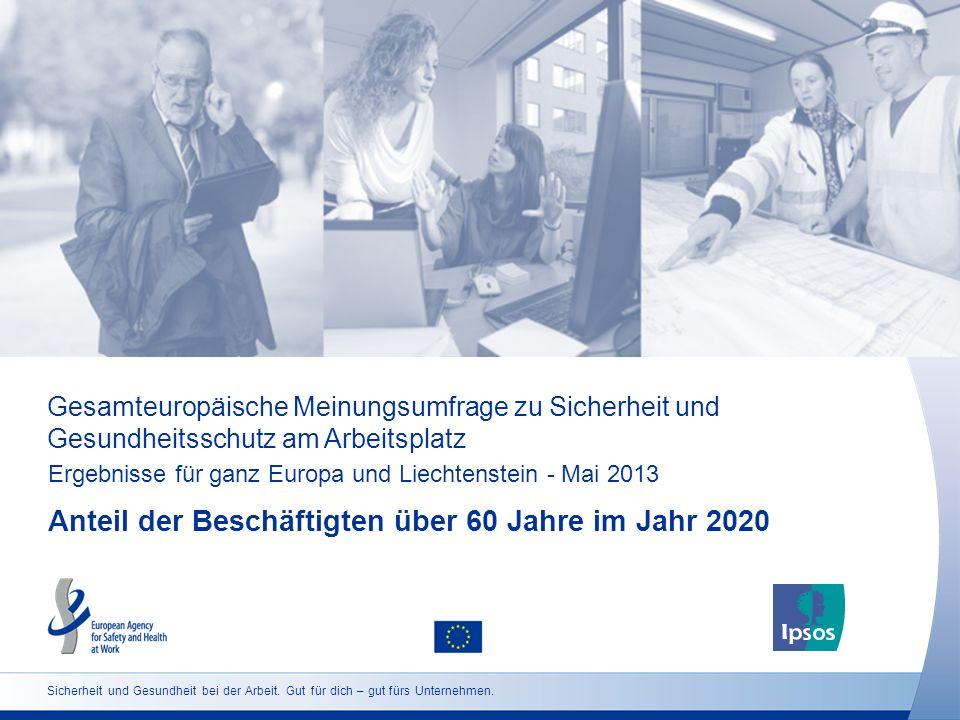 Gesamteuropäische Meinungsumfrage zu Sicherheit und Gesundheitsschutz am Arbeitsplatz Ergebnisse für ganz Europa und Liechtenstein - Mai 2013 Anteil d