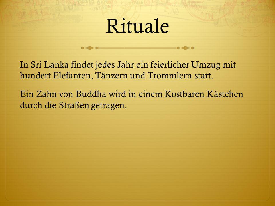 Karma Die Buddhisten reden sehr viel über Karma.