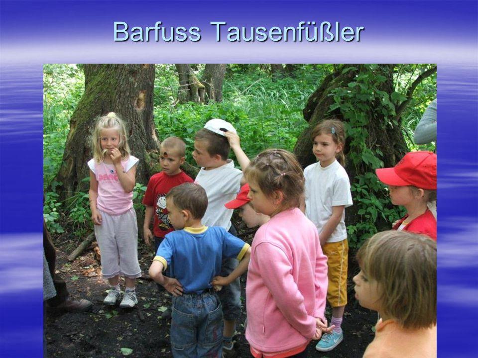 Barfuss Tausenfüßler