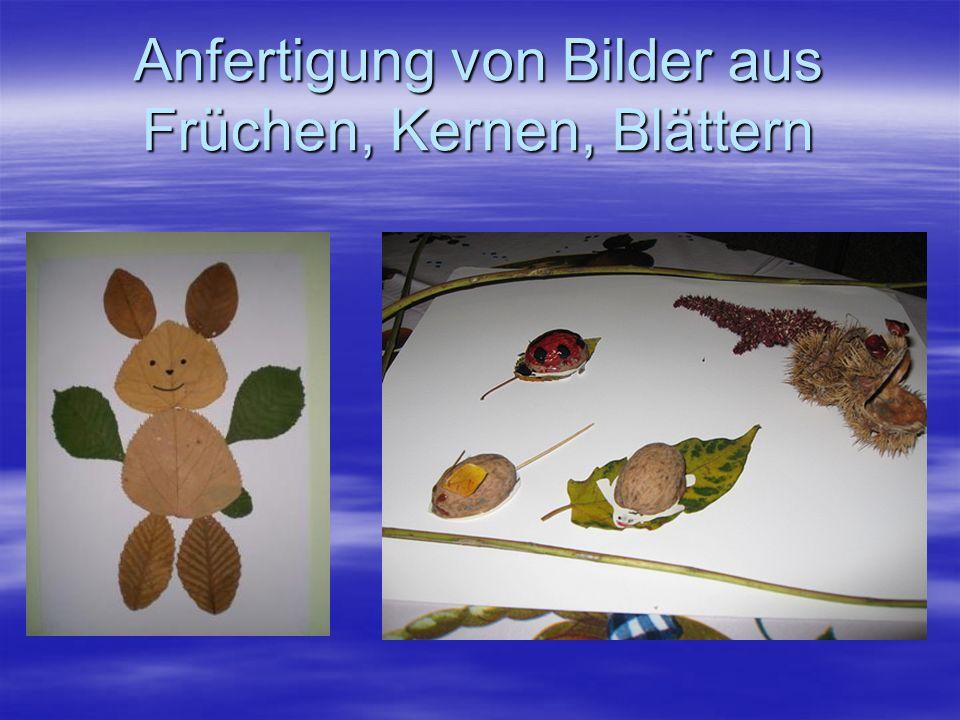 Anfertigung von Bilder aus Früchen, Kernen, Blättern