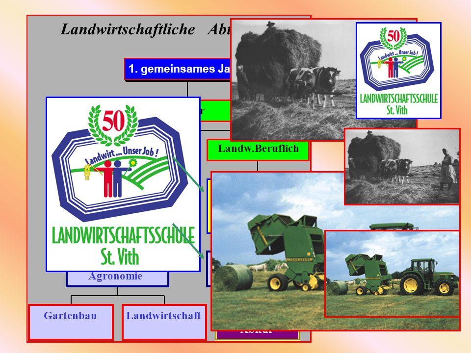 Landwirtschaftliche Abteilung GartenbauLandwirtschaft 5. + 6. Jahr AT Agronomie 3.+ 4.Jahr AT Qualifikation Technisch Biotechnik 7. Jahr LB